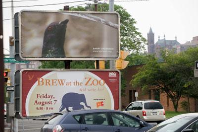 blog_Pigeon_billboard.jpg